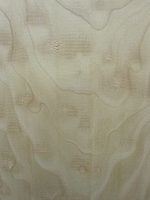 Bigleaf/Quilted Maple