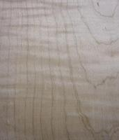Tiger Maple/Curly Soft